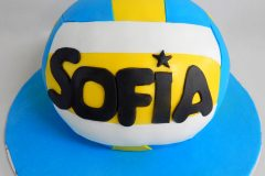 No-B-0472-Volley-ball